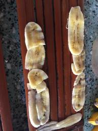 my banana cuts :/